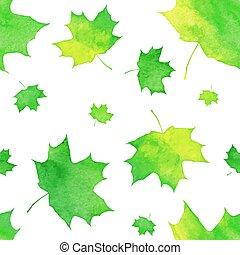 dipinto, modello, foglie, acquarello, verde, acero