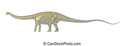 Diplodocus dinosaur silhouette, with full photo-realistic skeleton. On white background with clipping path.