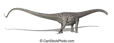 Diplodocus Dinosaur - The diplodocus dinosaur lived in North...