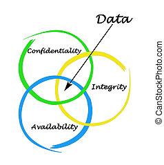 dirección, datos, principios