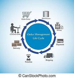 dirección, orden,  lifecycle