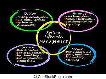 dirección, sistema, lifecycle