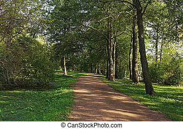 direct footpath in the shade of the park,