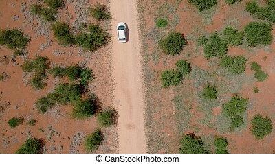 directement, conduite, voiture, africaine, route, savane