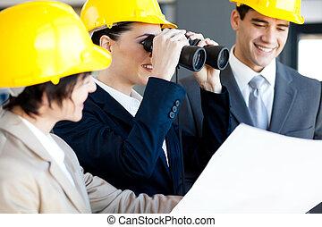 directeur, construction, examen, site