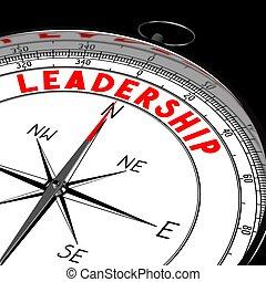 direction, -, 3d, compas