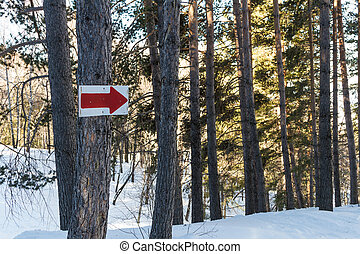directional arrow on the set on the tree