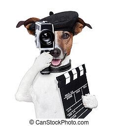 director, película, perro