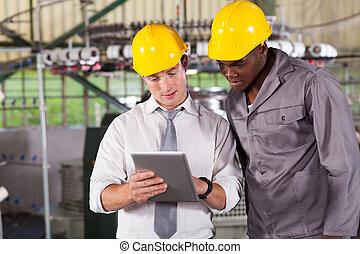 director, y, trabajador, el mirar, tableta, computadora