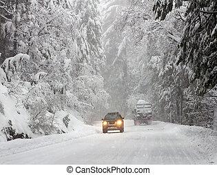 dirigindo, em, inverno, floresta