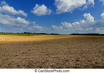 agricultural dirt field plowing under blue sky clouds