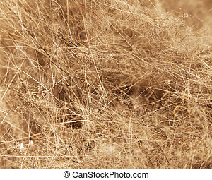 A dirt and dust texture with hair and fuzz