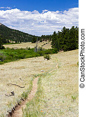 Dirt Hiking Trail in Colorado Mountains