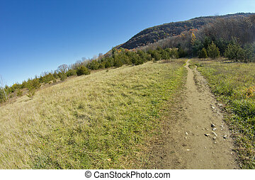 Dirt Path Appalachian Mountains