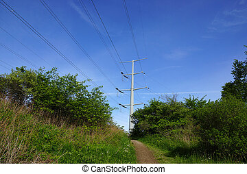 Dirt path leading to up hill with Metal Power Pole in the distance in Maine.