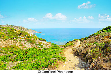 dirt path to the coast