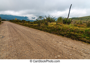Dirt Road and Clouds