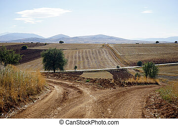 Dirt road and farmland, Turkey