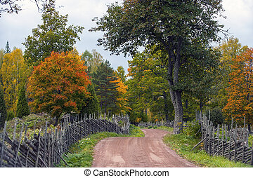 Dirt road and fence
