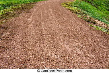 dirt road and force of nature, plant try to growing in nature