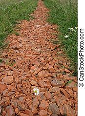 dirt road - Brick debris way with daisies