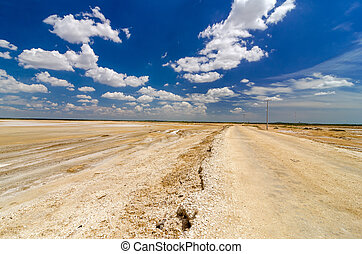 Dirt Road in a Desert