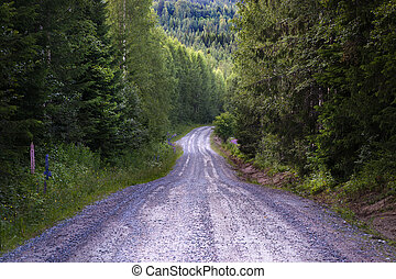 Dirt road in forest - Slope of dirt road in forest in summer