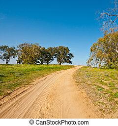 Dirt Road in Israel