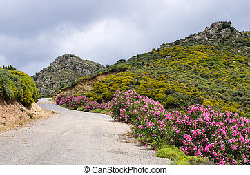 Dirt road in the mountains, Crete, Greece