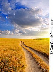 Dirt road in the steppe at dawn