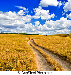 Dirt road in the steppe - The dirt road leaves for the...
