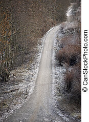 Dirt road in the winter