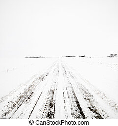 Dirt road in winter storm.