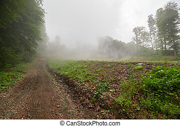 Dirt road on a mountain slope in dense fog.