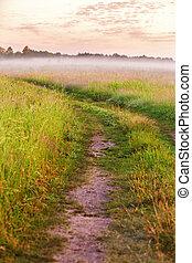 Dirt road on wild meadow in morning fog. Rural summer landscape