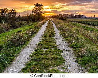 Sunset behind a dirt road path along farmland