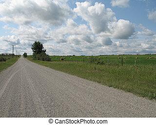 dirt road through a field