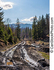 dirt road through cutting in forest. ecological disaster of...