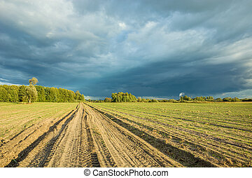 Dirt road through sown fields and dark rainy clouds in the sky
