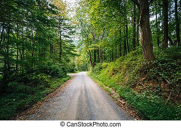 Dirt road through woods, in the rural Shenandoah Valley, Virginia.