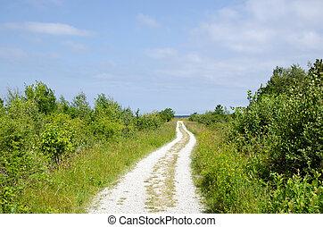 Dirt road to the beach trough green meadow