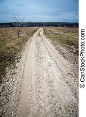 dirt road to the forest