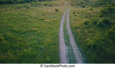dirt road to the meadow