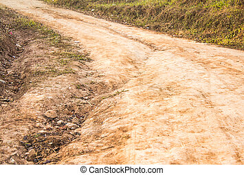 Dirt road with avenue of grass either side