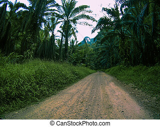 Dirt road with nature and wildlife views in the middle of the jungle in Thailand National Park.