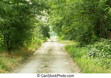 Dirt road with through the trees