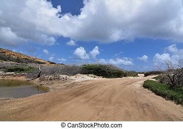 Winding dirt roadway in the Aruban desert landscape.
