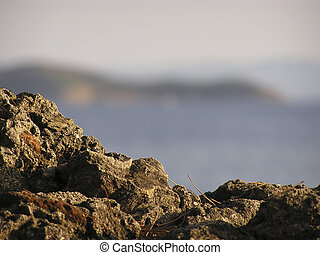 Macro photo of dirt ground with blury background.