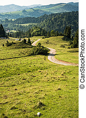 Dirt track road in Pieniny mountains, Poland