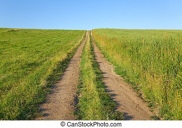 Dirtroad through a field